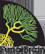 Logo Fungi Brain